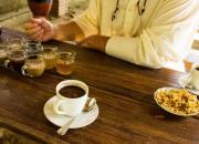 Kopi Luwak and Coffee and tea tasting in Bali