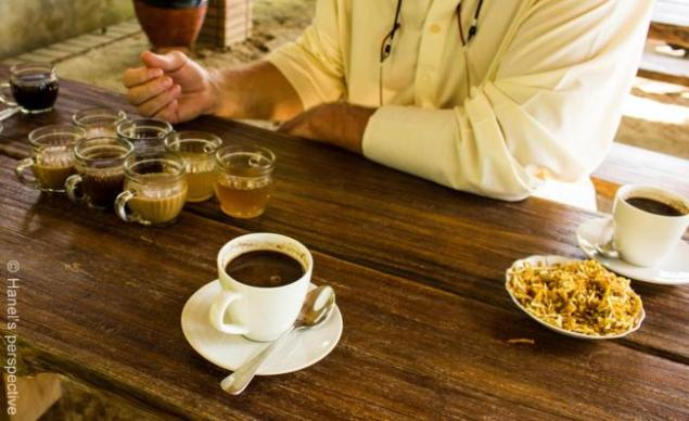 Coffee and tea tasting, with Kopi Luwak